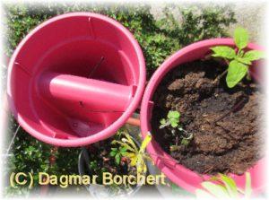 Mein Kleiner Schoener Garten Gardenline Balkon Blumentopf